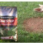 Free Pennington Lawn & Garden Product
