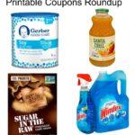 Printable Coupons Roundup: Santa Cruz, Sugar In The Raw, Windex & More