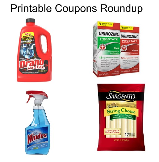 photo about Windex Printable Coupon identify Printable Discount coupons Roundup: Airborne, Transfer No cost, Windex