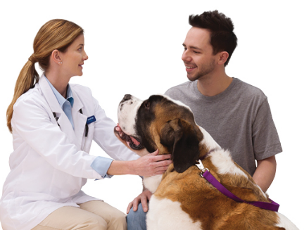 FREE Office Visit and Consultation at Banfield Pet Hospital