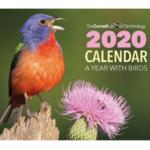 FREE 2020 A Year With Birds Calendar