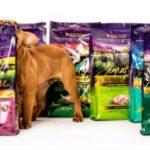 2 Free Samples of Zignature Dog Food